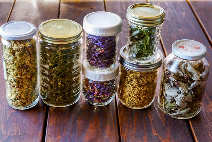 Some of the dried herbs i package into glass jars. Clover, Pineapple camomile, Fireweed flowers, wild Pea flowers, Elder blossoms, Raspberry leaves