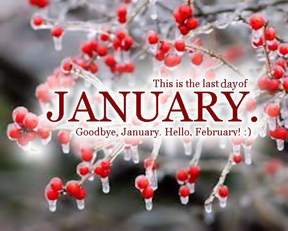 Image result for goodbye january