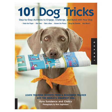 An essential for every dog owner, this step-by-step book teaches you and your canine counterpart tips and tricks that engage and challenge. ...