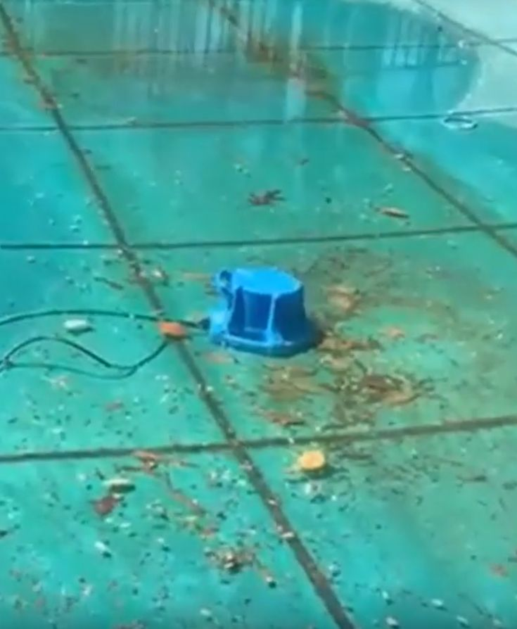 Best pool cover pump; what is the best pool pump; how to ...