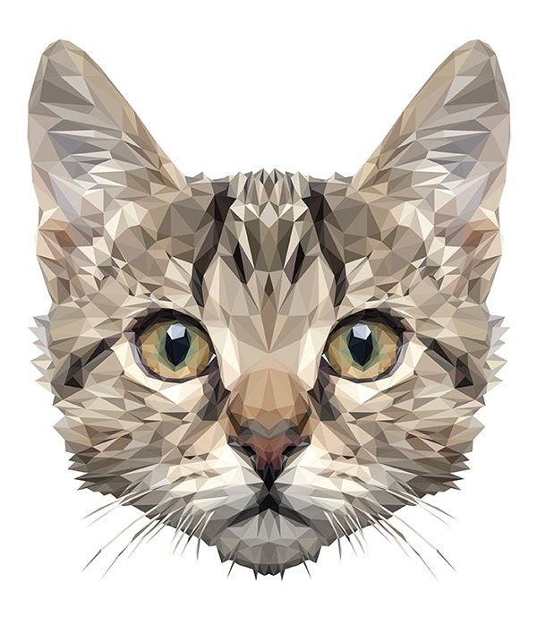 Low Poly Cat Digital Art // MR.Curiosity by INDYVISUAL design lab. #lowpoly #cat