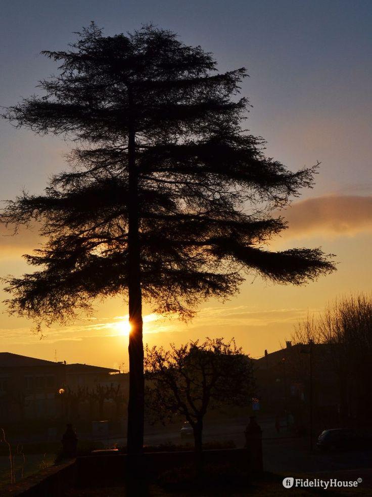 E' sempre bello vedere il sole sorgere ovunque ti trovi.