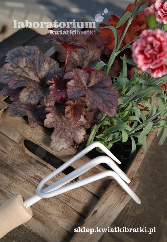 Białe pazurki. Narzędzie ogrodnicze służące do plewienia i grabienia oraz spulchniania ziemi wokół małych roślin ogrodowych i doniczkowych. Ułatwią pracę ogrodnicze w każdym miejskim ogrodzie, ogródku, balkonie i tarasie.    https://sklep.kwiatkibratki.pl/shop-2/narzedzia-i-akcesoria/biale-pazurki/