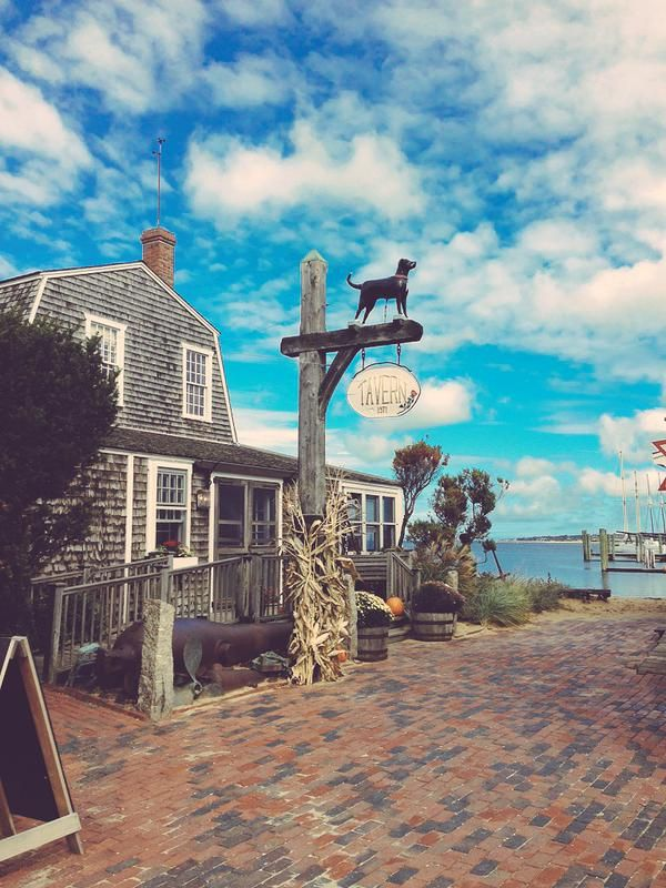 The Black Dog Tavern, Vineyard Haven - Nicholas Trandahl