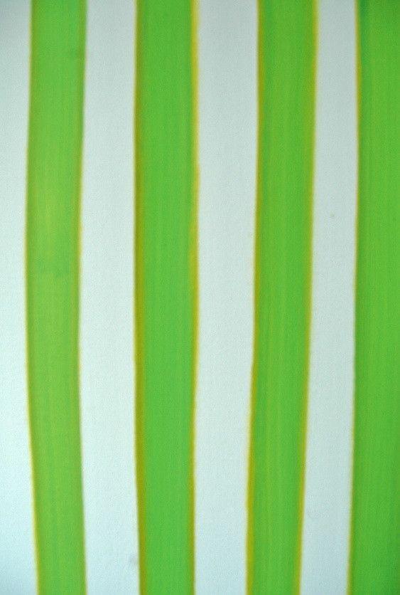 Emily Scott - Stripe No. 2, 2013 | @Artfetch