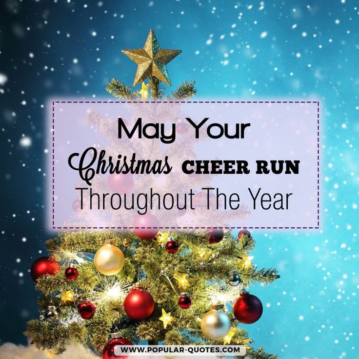 153 best inspirational christmas quotes wishes images on pinterest best inspirational christmas quotes for this christmas holidays by the publishing of popular quotes enjoy the best collection of quotes for christmas m4hsunfo Image collections