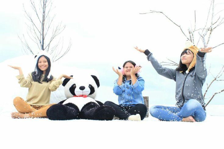 Winter ⛄❄