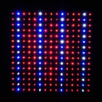 LEDwholesalers 2501QUAD Blue/Red/Orange/White 225 LED 13.8 Watt Square Grow Light Panel 110 Volt. Product Description  BENEFITS: This panel has no ballasts to burn out like other plant lights. It does not run hot, just warm.