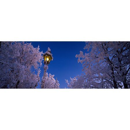 Low angle view of a lamp post lit up at night Imatra South Karelia Finland Canvas Art – Panoramic Images (36 x 12)