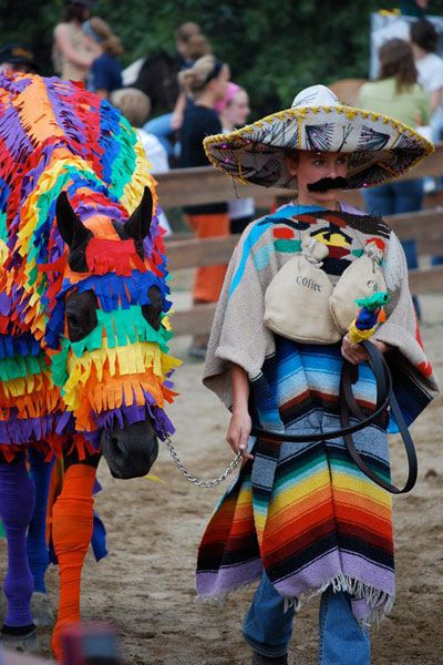 Costumes for Horse and Rider | See the Winners of Horse Illustrated's Facebook Costume Contest