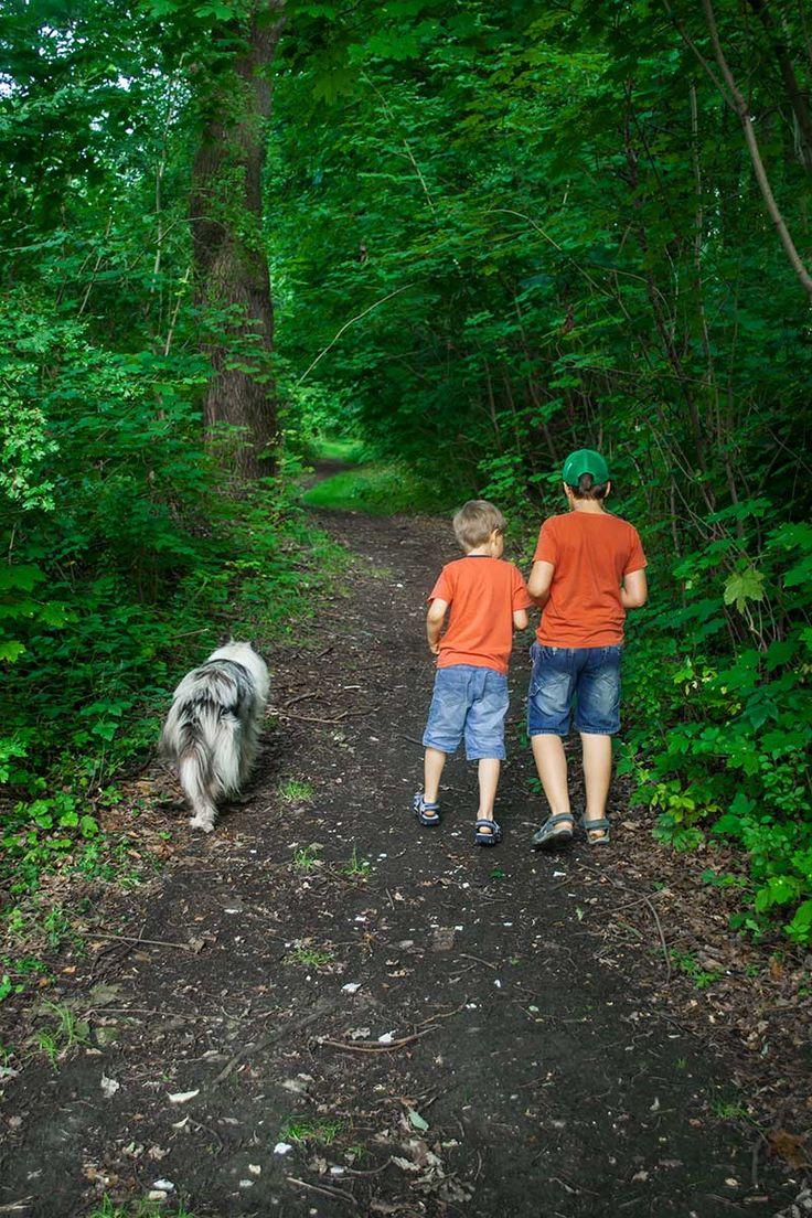 Jaka jest najlepsza różnica wieku między rodzeństwem? Niejednokrotnie zadajemy sobie to pytanie planując rodzinę. A jakie są moje doświadczenia? Przeczytajcie! http://www.domnaglowie.pl/najlepsza-roznica-wieku-miedzy-rodzenstwem/