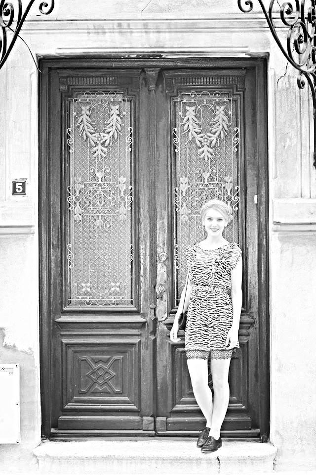 Beautiful Door Constanta, Romania