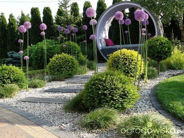 Na zielonej... trawce :) - strona 299 - Forum ogrodnicze - Ogrodowisko