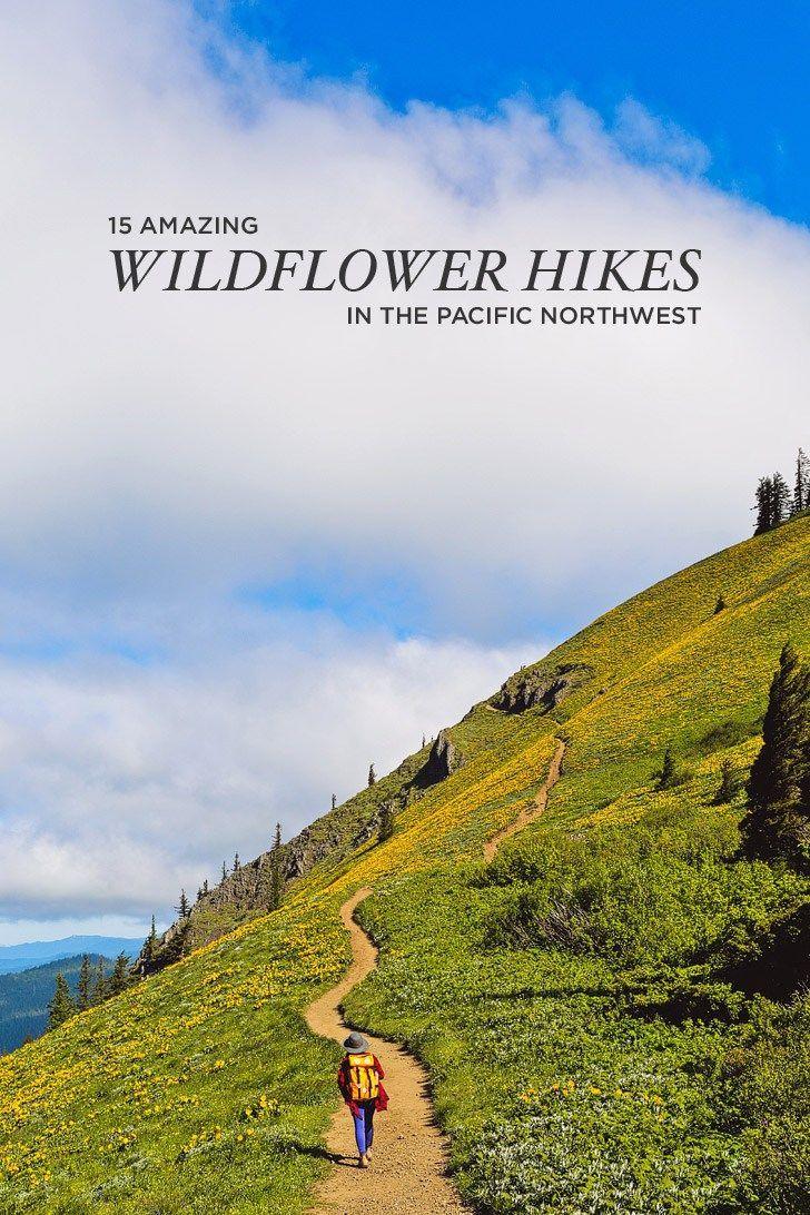 /// OTB /// 15 Amazing Wildflower Hikes in the Pacific Northwest // localadventurer.com