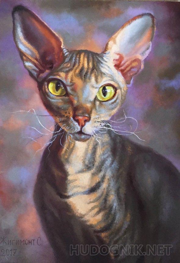 Портрет кошки сфинкса Портрет кошки-сфинкса. Великолепные фантастические создания, они будто специально выведены человеком для вдохновения скульпторов и живописцев.