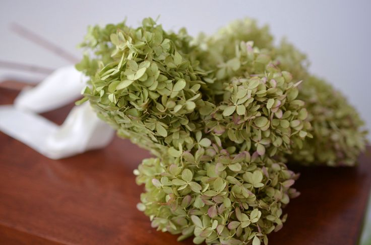 Dried Limelight Hydrangea Bunch, dried hydrangea, limelight hydrangeas, peegee hydrangeas, wedding decor, do-it-yourself wedding by TheBlaithinBlairShop on Etsy https://www.etsy.com/listing/180881280/dried-limelight-hydrangea-bunch-dried