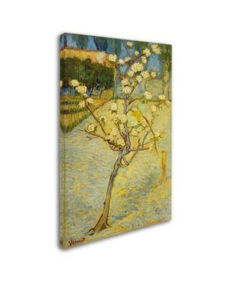 "Van Gogh 'Small Pear Tree In Blossom' Canvas Art - 47"" x 30"" x 2"" - Multi"