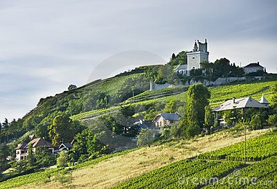 A French chateau overlooking green vineyards.