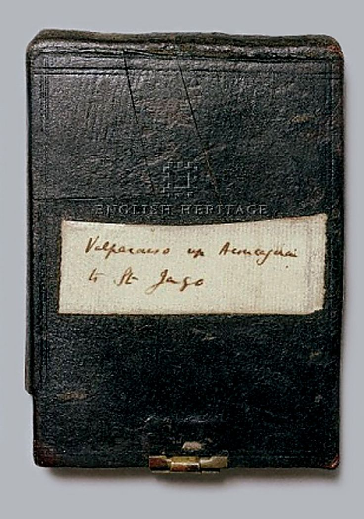 darwin's notebook ... the ultimate science journal ... maybe your students would like to see this as an example of what real scientists do