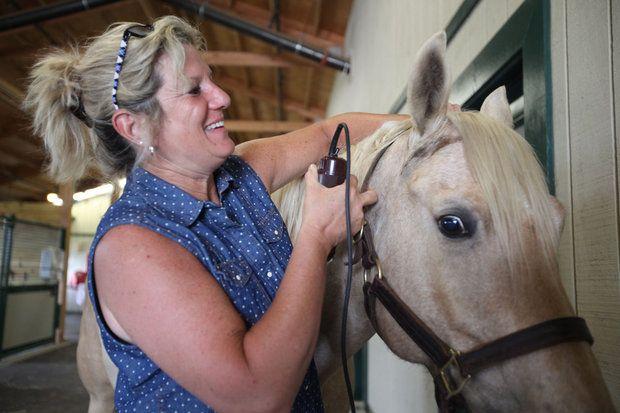 A pioneering study at the University of Kentucky suggests humans have a lot to learn from horses.  Horses can help people develop empathy and enhance social and leadership skills, according to a recently-completed study of equine-assisted learning among 21 nurses at UK Chandler Hospital.   Read more here: http://www.kentucky.com/2013/06/02/2662976/university-of-kentucky-study-suggests.html#storylink=cpy
