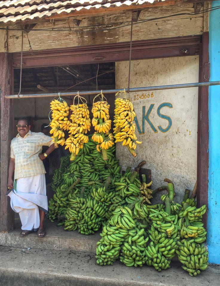 The banana king, Alleppy, India.  www.finisterra.ca  #incredibleindia #market