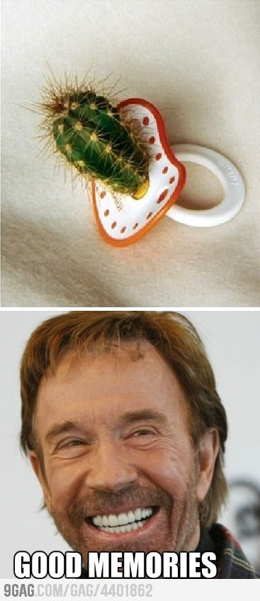 Chuck Norris and his memories