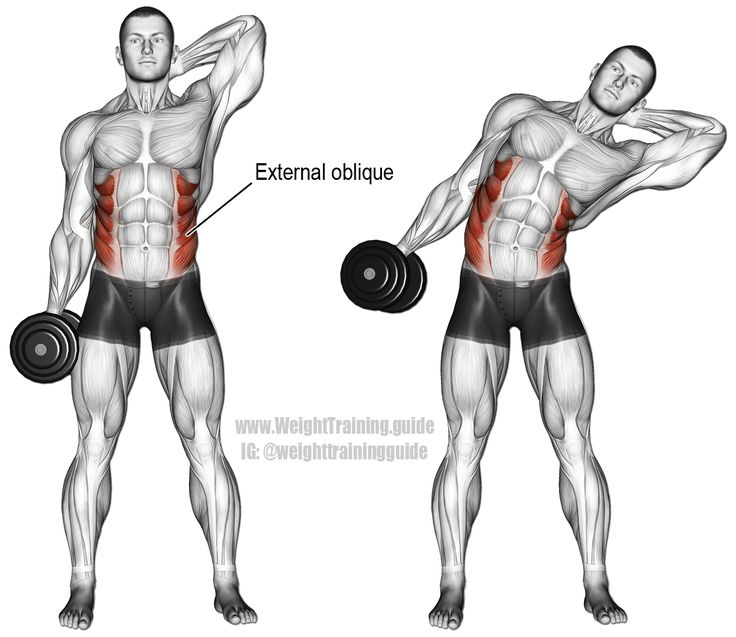 Dumbbell side bend. An isolation exercise. Target muscles: Internal and External Obliques. Synergistic muscles: Quadratus Lumborum, Psoas Major, Iliocastalis Lumborum, and Iliocastalis Thoracis (all of which are deep core muscles). Note: Keep the dumbbell close to your side, unlike in the illustration.