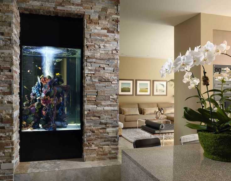 Architecture interior design for Aquarium interior decoration