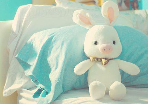 Pig Rabbit - You're Beautiful!