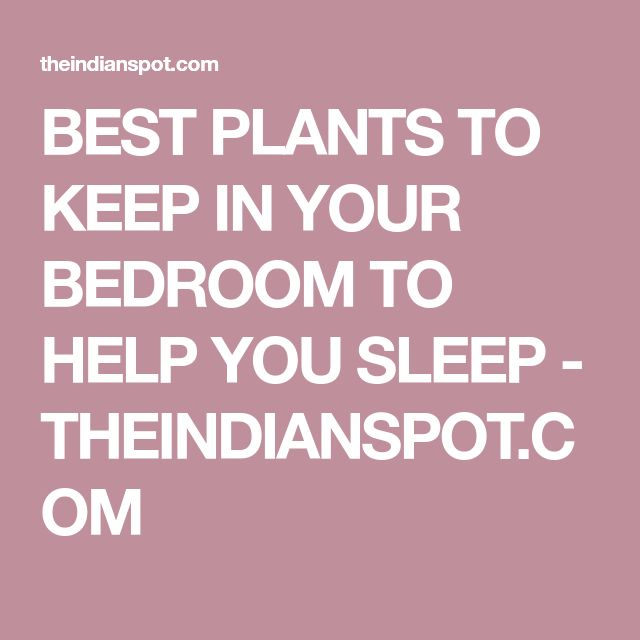 BEST PLANTS TO KEEP IN YOUR BEDROOM TO HELP YOU SLEEP - THEINDIANSPOT.COM