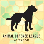 """The Animal Defense League was established in 1934 by a group of individuals, """"for the prevention of cruelty to animals; to promote kind and humane treatment of animals; and to aid and assist the enforcement of laws enacted for the prevention of animal cruelty."""""""