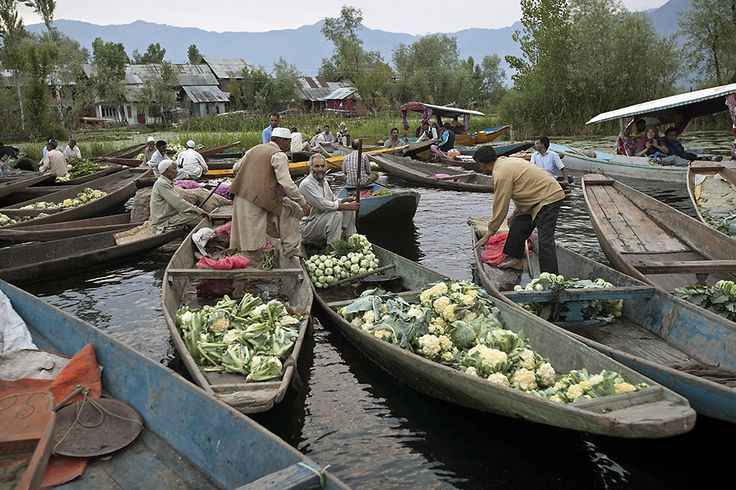 In Photos: Catch The Dawn At Kashmir's Famous Floating Market On Dal Lake | National Geographic Traveller India