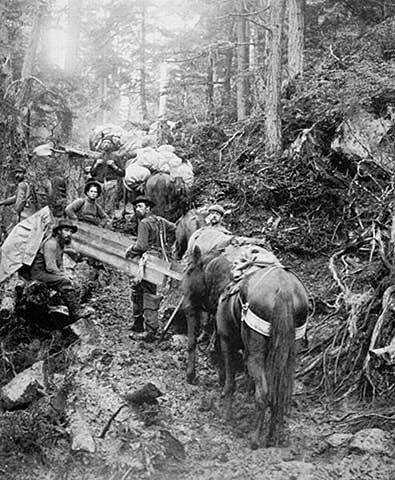 Miners climbing the Chilkroot pass during the Klondike gold rush in Alaska.- 1897-98