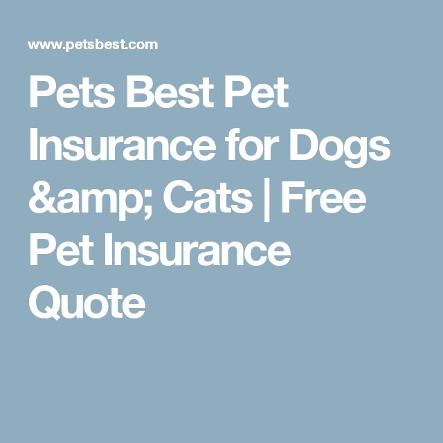 Pets Best Pet Insurance for Dogs & Cats | Free Pet Insurance Quote
