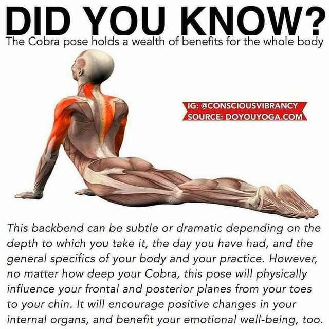 You can only do these stretches after flaying your skin – G. G.