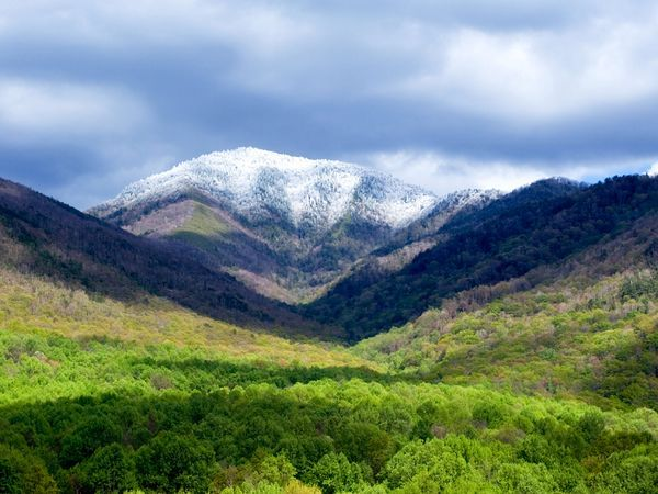 Mount Leconte, Great Smokey Mountains National Park, TN. I can check this one off my list :)