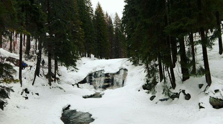 #waterfall #forest #trees #snow #winter #foggy #nature #river #mountains