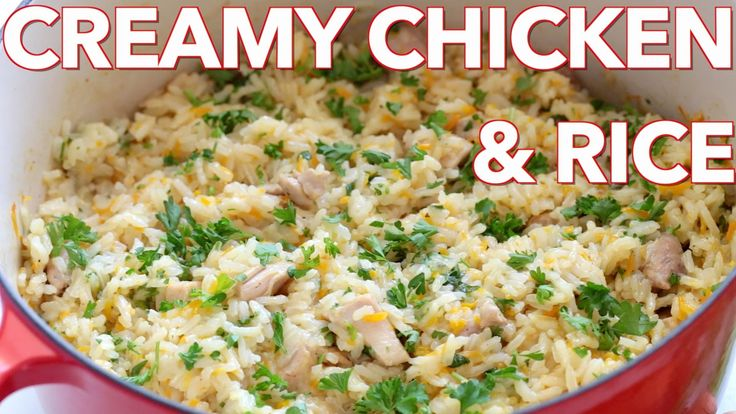 Dinner: Creamy Chicken and Rice - Natasha's Kitchen