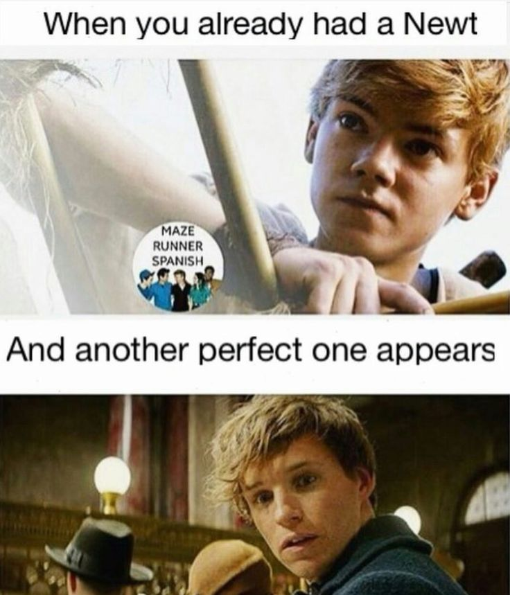 When you already have a Newt...and another perfect one appears [The Maze Runner, Fantastic Beasts]