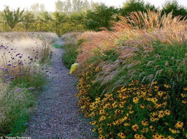 Un jardin parfaitement dessin for Jardin eden prairie