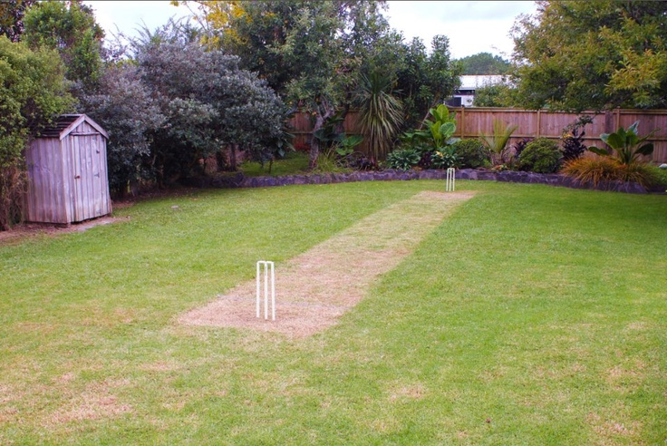 Backyard cricket anyone?