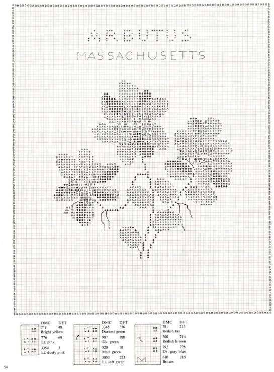 Gallery.ru / Фото #54 - U.S.State Flowers in Counted Cross-Stitch - Orlanda