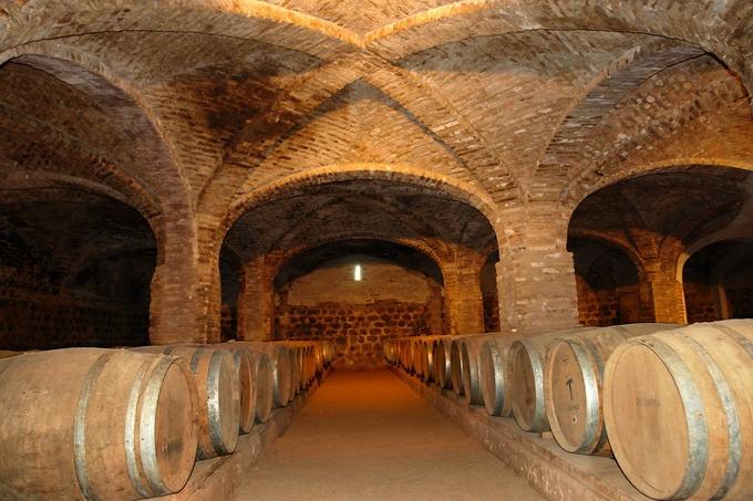 Tonéis de vinho no subterrâneo da Vinha Santa Rita