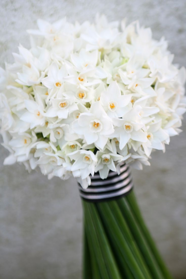 Image result for Paperwhites bouquet