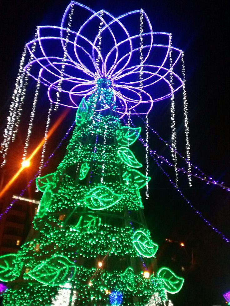 Iluminación Navideña del Parque El Virrey en la Carrera 15 en Bogotá.