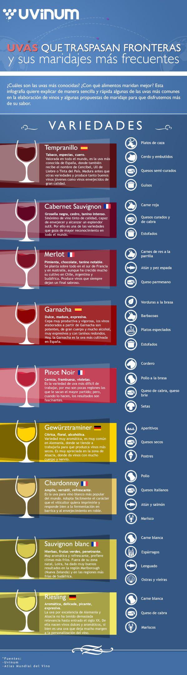 Infografía vinos: uvas y maridaje por Uvinum
