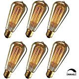 KINGSO Vintage Edison Bulbs 60W Squirrel Cage Filament Incandescent Antique Dimmable Light Bulb for Home Light Fixtures E27 Base ST64 110V - 6 Pack - - Amazon.com