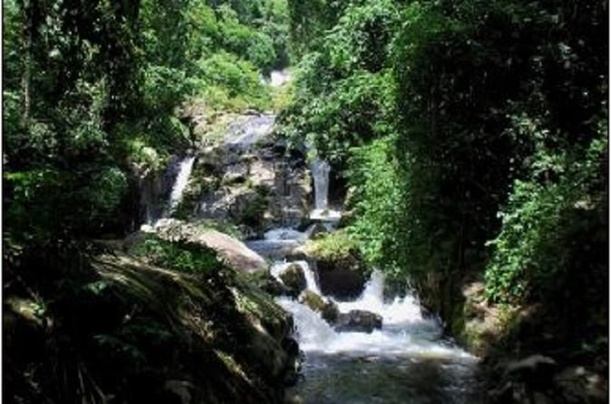 Cuc Phuong National Park Trekking Day Trip - TripAdvisor