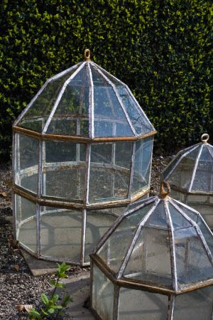 Old fashioned glass cloches near the greenhouses in the garden at Erddig, Wrexham, Wales