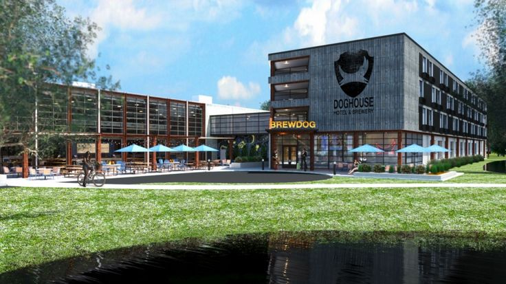 De Schotse bierbrouwerij BrewDog heeft grootse plannen: een bierhotel bouwen door middel van crowdfunding. Het ding gaat Doghouse heten en is voorzien van alle belangrijke voorzieningen: bier, bier en bier.